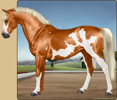 horse breeding game